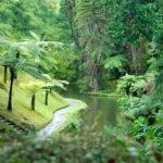 Park Terra Nostra in Furnas